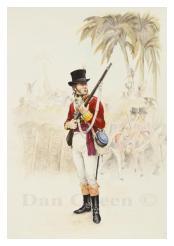 Adjutant, 83rd Regiment of Foot - Jamaica, Maroon War, 1795