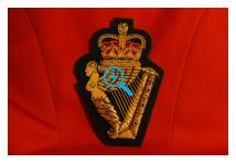 Blazer Badge - Ulster Defence Regiment
