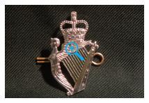 Cap Badge - Royal Irish Regiment - New
