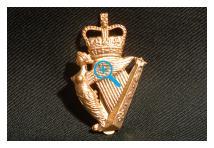 Cap Badge - Ulster Defence Regiment