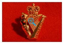 Lapel Badge - Ulster Defence Regiment