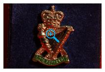 Lapel Badge - Royal Ulster Rifles
