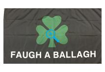 Flag - Royal Irish Shamrock Flag