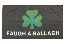 Flag - Royal Irish Shamrock Flag