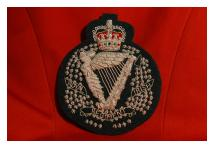 Blazer Badge - Royal Irish Regiment