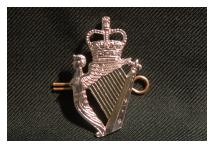 Cap Badge - Royal Irish Regiment - New
