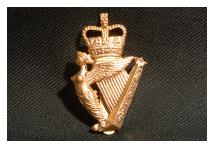 Cap Badge - Ulster Defence Regiment