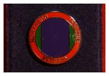 Lapel Badge - Northern Ireland Veteran