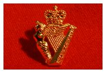 Lapel Badge - Ulster Defence Regiment