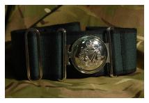 Stable Belt - Royal Irish Regiment - New