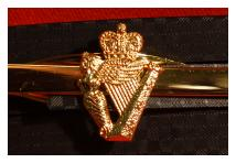 Tie Clip - Ulster Defence Regiment