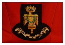 Blazer Badge - Royal Irish Fusiliers
