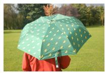 Greenfinch Handbag Umbrella