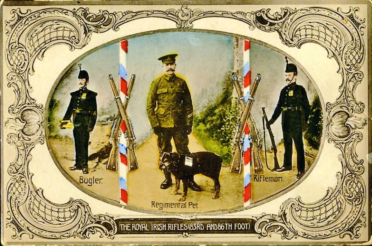 Billy Postcard